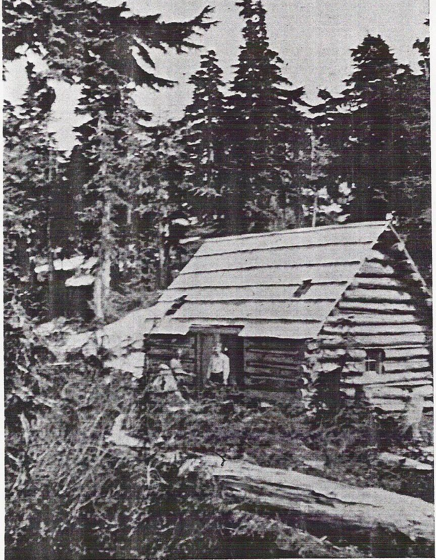 Cokely Cabin halfway up the CPR Trail from Cameron Lake to Mount Cokely
